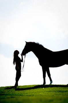 pretty horse pictures website