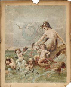 beautiful Old mermaid print