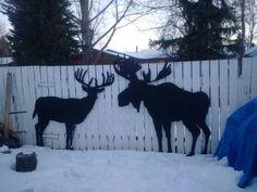 Deer and Moose