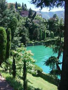 Park in Lugano, Switzerland... most enchanting serene place I've ever been.