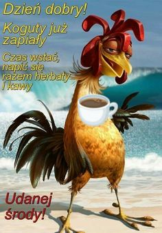 Rooster, Humor, Funny, Pictures, Animals, Album, Anime Tattoos, Good Morning, Poster