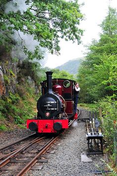 Talyllyn Railway whistles its way though the lush Fathew Valley on the narrow-gauge railway line that's set in the striking Mid-Wales countryside. It has volunteers as employees and the train makes its way through the Dolgoch Falls, Wales, UK.