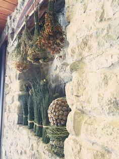 le erbe di san giovanni : iperico, lavanda,elicriso.