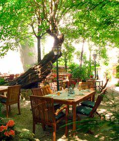 Und noch ein Restaurant mit lauschigem Gastgarten: das Freyenstein in der Thimiggasse im 18. Outdoor Furniture, Outdoor Decor, Where To Go, Vienna, Austria, Places To Go, Europe, Restaurant, World