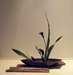 The Nordic Lotus Ikebana Blog: Peaceful Harbor