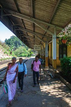 A Beautiful Sri Lanka Train Trip from Ella To Kandy