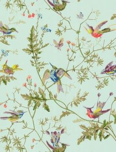 Beautiful vintage-style hummingbird wallpaper by Cole and Son - just gorgeous. | http://green-collections.blogspot.com
