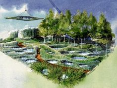 Diarmuid Gavin's entry for this year's Chelsea Flower Show has won GOLD !!!