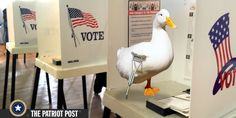 Time to End Early Voting and the Lame Duck Congress