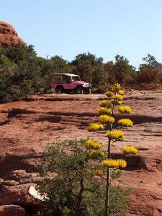 Sedona, Arizona - Pink Jeep Tour