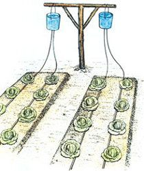 DIY Home Irrigation System. Bucket drip kits are a modest one time cost which allows for minimal use of water. Drip irrigation, originally developed in Israel, targets precious water to where it needs to go, the roots of the plants. Backyard Garden Landscape, Veg Garden, Garden Types, Large Backyard, Garden Fencing, Garden Beds, Garden Landscaping, Indoor Garden, Modern Backyard