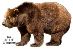 Bear Animal Wall Art Laser Cut Out Metal Sign 16x24