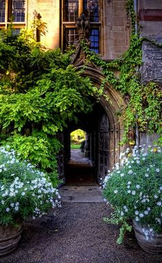 The Chapel Passage, Balliol College, Oxford, England (by sdhaddow on Flickr )
