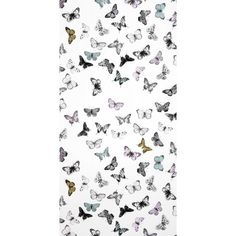 Butterfly White Multicolor