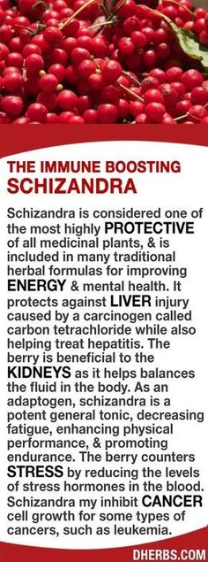 Schizandra is considered 1 of the most highly protective of all medicinal plants, included in many traditional herbal formulas for improving energy & mental health. It protects against liver injury & helps treat hepatitis. Beneficial to the kidneys as it helps balances the fluid in the body. As an adaptogen, it's a potent general tonic, decreasing fatigue, enhancing physical performance, & promoting endurance. It counters stress by reducing stress hormones in the blood. #dherbs