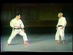 Best of Wado ryu Karate