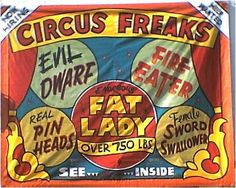 sideshow art-try to work on some freak versions for our circus-dress up dogs like clowns & let them dance; do some tight rope tricks activity(even if rope laid on ground really); pony rides; make up some things to look at(puns on circus acts); etc...