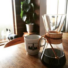 coffee ranyday dog bostonterrier
