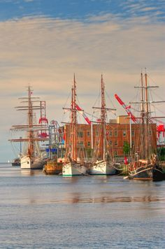 Tall Ships in Halifax, Nova Scotia - Canada - Awesome little city with a important canadian history, showcased in its great museums Nova Scotia, The Places Youll Go, Places To Go, Ontario, Alaska, Canada Eh, Canadian History, Prince Edward Island, New Brunswick