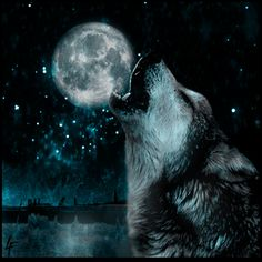 Howling Wolf Quotes. QuotesGram