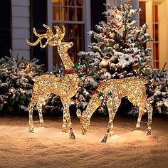 Amazing Reindeer lights, what better place to put then than on your balcony =) Participate in our Christmas contest: http://www.balcouk.com/news/instagram-contest
