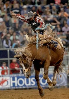 Joaquin Real was bucked off in 7 seconds in the Saddle Bronc Riding in the Super Series II rodeo competition at Reliant Stadium in Houston, Texas.    Photo By Thomas B. Shea/For the Chronicle