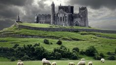 Once known as O'Briens Castle - It now goes by the name Rock of Cashel - Ireland.
