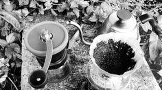 Kenali dekati aroma dan rasanya siapa tau jodoh . . . #coffee #manualbrewing #v60 #jauhdarikesempurnan #hario #kerincikayuaro #alternativebrewing #hobikopi #thanksallah http://ift.tt/20b7VYo