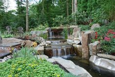 The pond ponds and colors on pinterest for Koi pool thornton