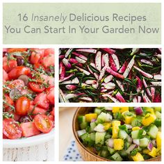 Simple and delicious recipes you can make from your garden.
