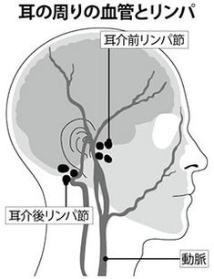 "Eyesight improves on the spot! Various irregularities occur when `` ear holes '' are struck .- Eyesight improves on the spot! Various troubles are improved by removing ""ear holes"" Health Diet, Health Care, Health Fitness, Massage Tips, Acupuncture Points, Holistic Medicine, Pressure Points, Beauty Advice, Acupressure"