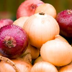 Onion. The most indispensable culinary ingredient in the world.