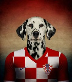 Native Dogs Represented as World Cup Soccer Players   #johnpaulpet #worldcup #pets
