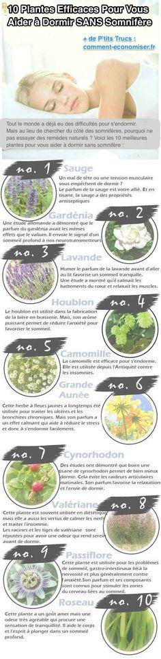 Il existe de nombreuses plantes efficaces qui peuvent vous aider à dormir. Découvrez les 10 meilleures plantes pour vous aider à dormir sans utiliser de somnifères.  Découvrez l'astuce ici : http://www.comment-economiser.fr/10-plantes-efficaces-pour-vous-aider-a-dormir-sans-somnifere.html?utm_content=buffer39acb&utm_medium=social&utm_source=pinterest.com&utm_campaign=buffer