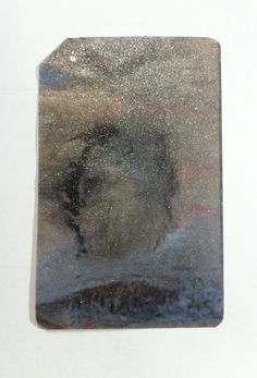 Maeshelle West-Davies MetroCard