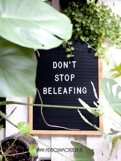 Grappige plantenquote voor op je letterbord of lightbox. #plantquote #plantenquotes #letterbord #letterboard #lightbox #planten #plants Lovers Quotes, Life Quotes, Spending Time Quotes, Good Times Quotes, Plants Quotes, Funny Relatable Quotes, Plant Therapy, Garden Quotes, Nature Quotes
