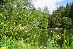 Burg Werdenfels Mountains, Nature, Travel, Outdoor, Ruins, Hiking, Outdoors, Naturaleza, Viajes