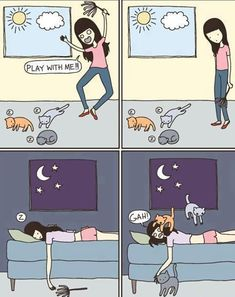 Kitties Play When They Want