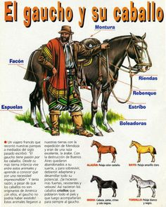 un cacho de cultura gaucho. Best explaoned to English speakers in Disney's movie, Saludos Amigos, compainion movie to the 3 Caberlllos Spanish Lesson Plans, Spanish Lessons, Rio Grande Do Sul, Teaching Culture, Horse Adventure, Argentina Culture, Horses And Dogs, Country Art, My Land