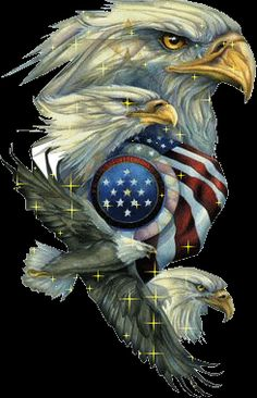 Animated Eagle Glitter GIFs and Animated Images. Patriotic Pictures, Eagle Pictures, I Love America, God Bless America, American Pride, American Flag, Aigle Animal, Harley Davidson, 12 Tribes Of Israel