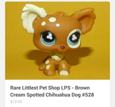 8 Chihuahua Dog Breeds That Will Melt Your Heart Lps Dog, Lps Pets, Chihuahua Puppies, Chihuahuas, Lps Collies, Custom Lps, Toy Garage, Palace Pets, Lps Littlest Pet Shop