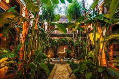 Renowned, nationally as well as internationally, Al Fassia offers luxury accommodation and the finest Moroccan cuisine. Moroccan Restaurant, Luxury Accommodation, Marrakech, Paradise, Plants, Image, Morocco, Chic, Food And Drinks