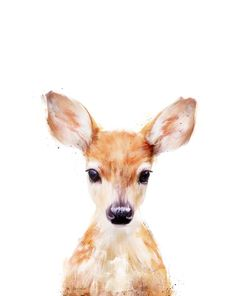 Little Deer Art Print by Amy Hamilton. All prints are professionally printed, packaged, and shipped within 3 - 4 business days. Choose from multiple sizes and hundreds of frame and mat options. Watercolor Animals, Watercolor Art, Painting Inspiration, Art Inspo, Baby Animals, Cute Animals, Funny Animals, Deer Art, Art Et Illustration