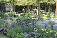 Chelsea flower show, light and beautiful garden Garden Show, Love Garden, Herb Garden, Delphinium, Amazing Gardens, Beautiful Gardens, Foeniculum Vulgare, Chelsea Garden, California Garden