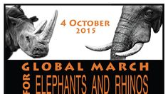 Petition · Embassies & consulates of Sth Africa, Zimbabwe, Tanzania, Kenya, Vietnam, Thailand, India & China: Stop the slaughter and put an immediate end to all ivory and rhino horn trade · Change.org