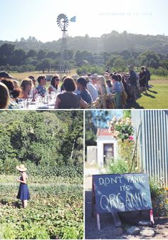 Farm to table style dinner hosted by Outstanding in the Field at Everett Family Farms, an organic farm near Santa Cruz