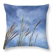 Summer Breeze Throw Pillow by Inspired Arts