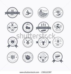 Set of vintage style elements for labels and badges for natural organic products, biodynamic agriculture. Agriculture and farming logos.