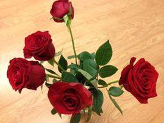 Las rosas rojas...