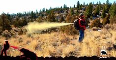 Backpack with bear spray saves your life in worst case scenario